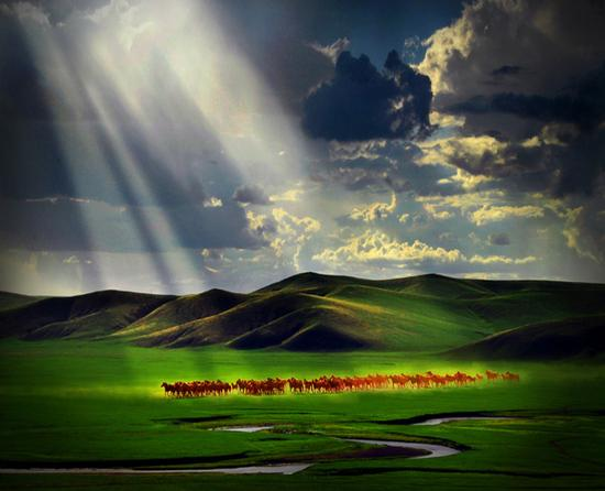 风从草原来, 吹动我心怀;
