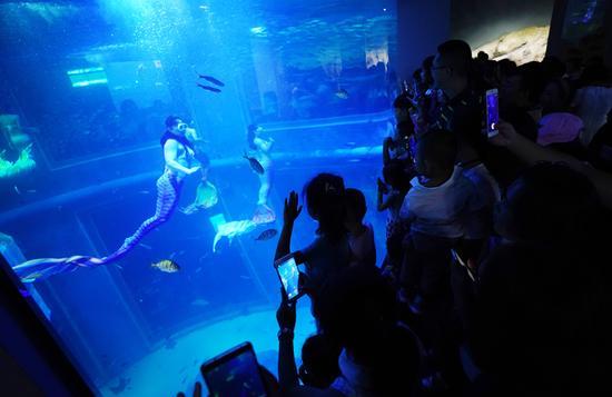 游客在观看美人鱼表演。