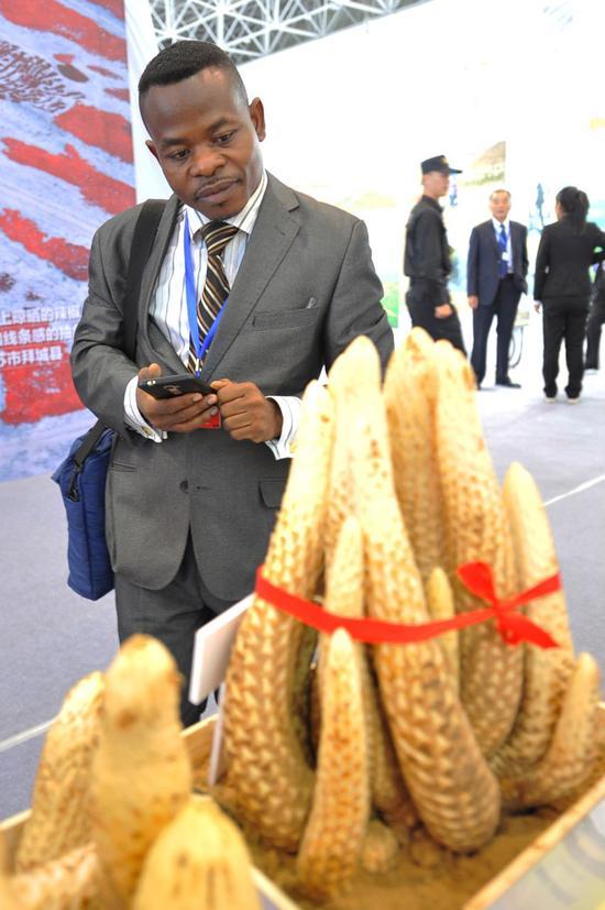 各国代表为中国防治荒漠化成就点赞