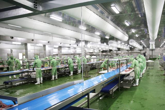 羊价上涨打造品牌 锡林郭勒盟生态羊有望走出困境