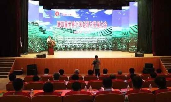 第四届世界小米起源与发展大会会场。张锦川摄
