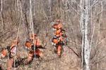 森林灭火进行时