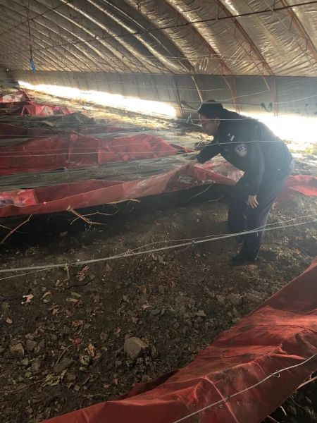 民警分别深入辖区开展严防反季节种植毒品踏查工作