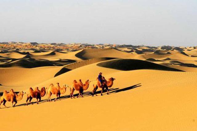 阿拉善盟:文化惠民工程提升百姓幸福感