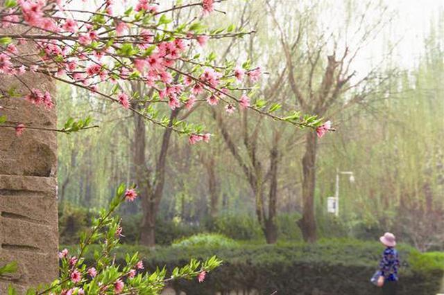 暖春四月风光好 如诗如画绝美景