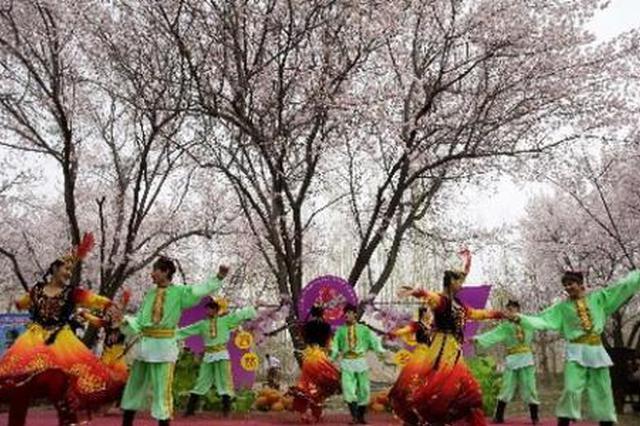 喀喇沁旗第十四届杏花节开幕