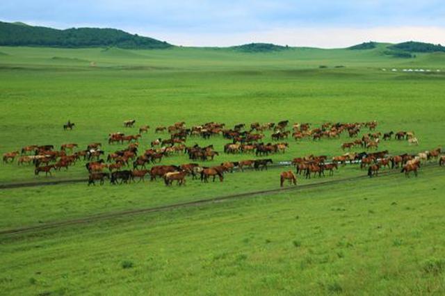中国美术家草原四季(春季)采风写生活动在赤峰市拉开帷幕