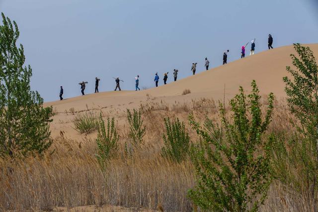 """""""履行义务植树 共建美丽中国""""义务植树活动在库布其举行"""