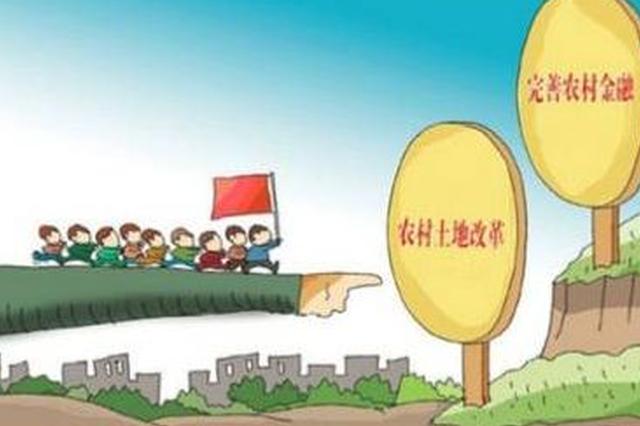农村金融助力乡村振兴