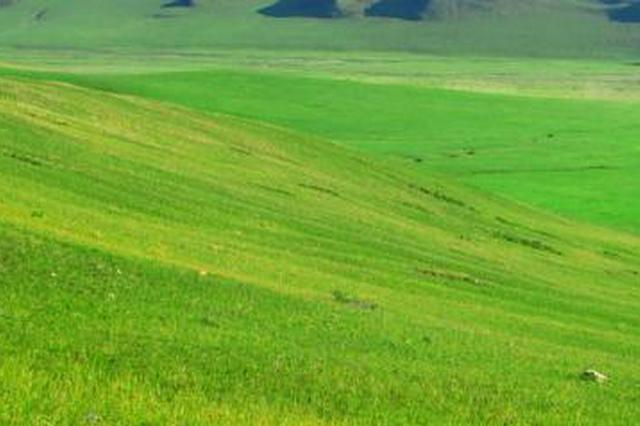 苏尼特右旗:牧民巡护队让草原生态防护无死角