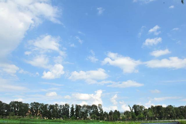 巴彦淖尔:让天空澄净清新 田野绿波涌动
