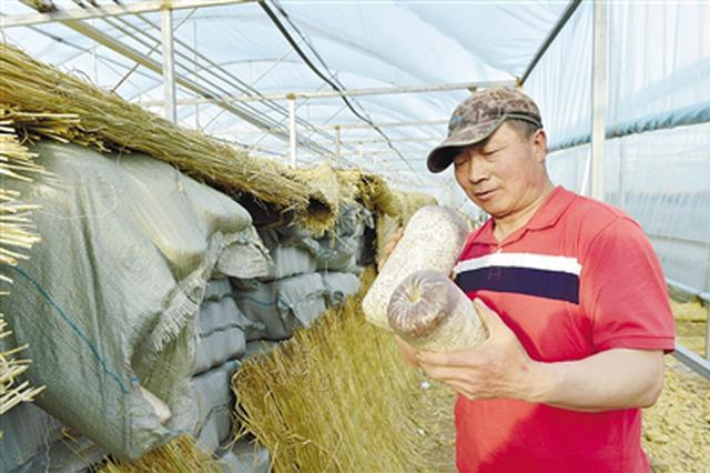 内蒙古自治区各厅局10年帮扶鄂伦春旗实施817个项目