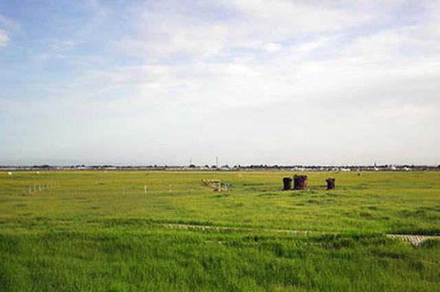 美丽中国我是行动者 保护环境 构建和谐生命共同体