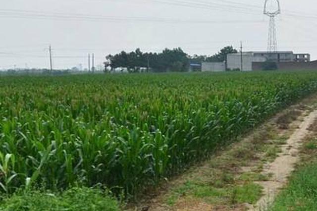 呼和浩特市赛罕区财政局规范发放 耕地地力保护补贴