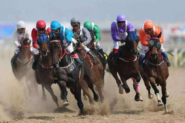 内蒙古自治区马术节暨蒙骏速度马系列赛开赛
