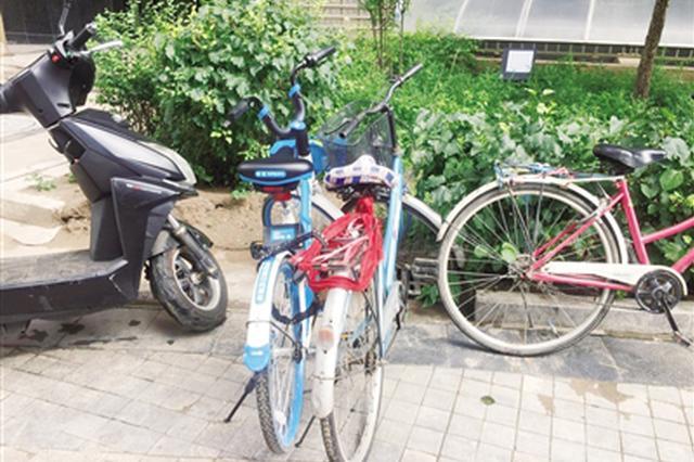 """共享单车被私自上锁 想变""""私有单车""""?"""