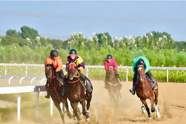 呼和浩特市蒙古马常规赛于9月8日举办开幕仪式