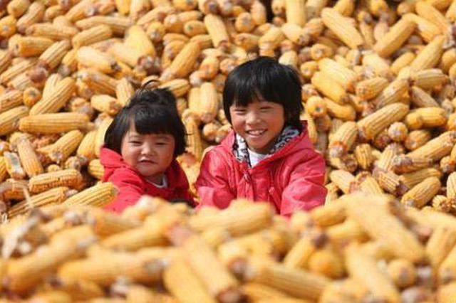 """""""内蒙古自治区首届中国农民丰收节""""准备就绪"""