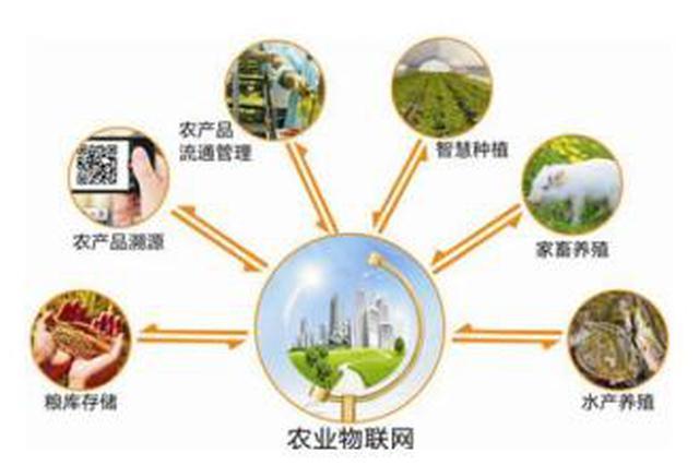 监管全覆盖 源头可追溯 达拉特旗严把农畜产品质量