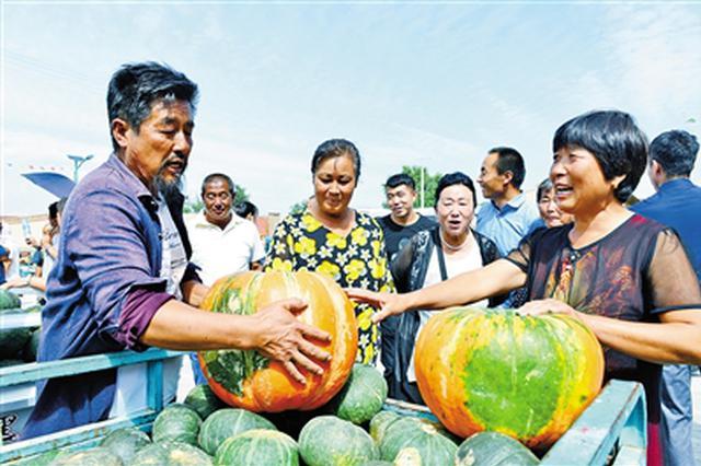 """32斤重的大南瓜亮相""""南瓜节""""绿色农产品交流会"""