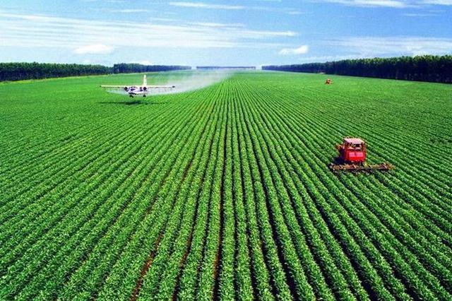 """巴彦淖尔市:现代农业""""植入""""科技基因"""
