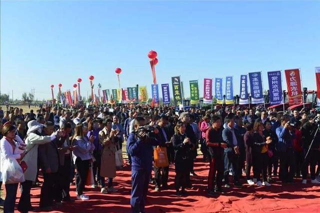 巴彦淖尔庆祝中国农民丰收节活动在临河区举行