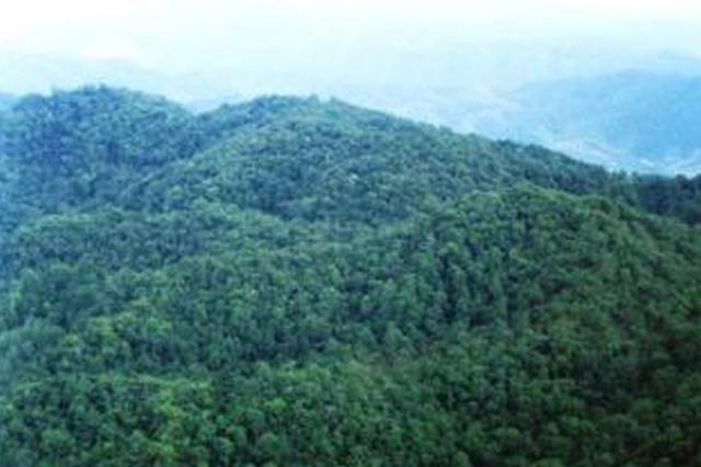 巴彦淖尔已完成林业建设面积38.82万亩