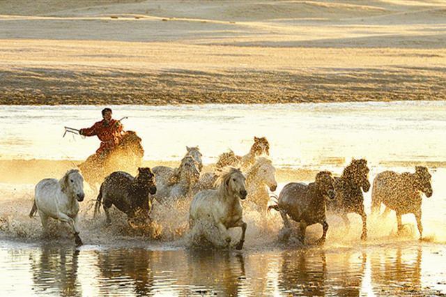 骏马奔腾等特色旅游项目构成金秋草原独特的风景