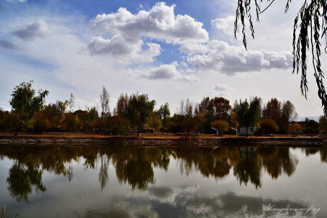 """乌海市赛汗乌素村: 黄河岸边的""""红酒小镇"""""""