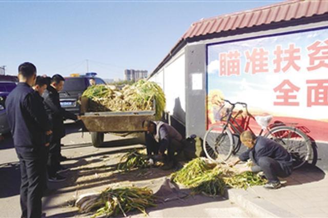 近郊冬储菜上市 城管协调农贸市场免费提供销售场地