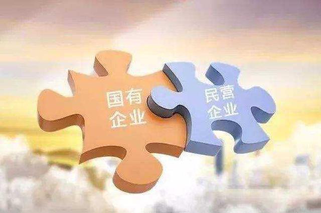内蒙古自治区积极稳妥发展混合所有制经济
