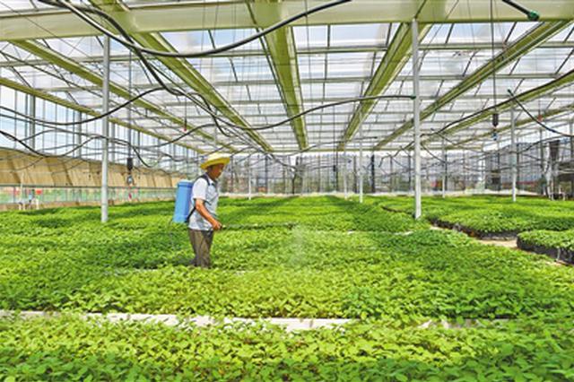 青城硕丰蔬菜种植农民合作社 助力打赢整村脱贫攻坚战