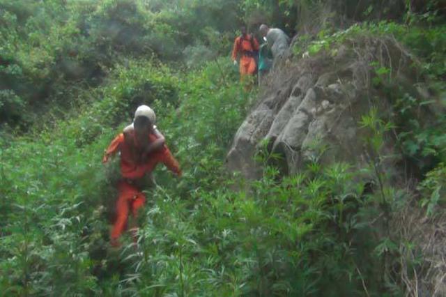 8岁聋哑男孩山顶上失联 40余人兵分五路6小时成功搜救