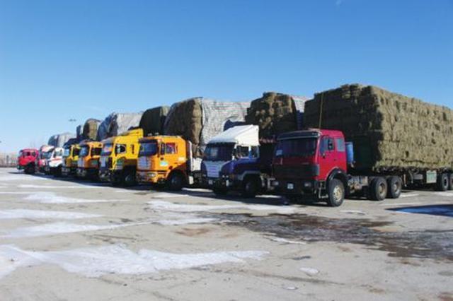 内蒙古前10月累计实现进出口总值852.7亿元