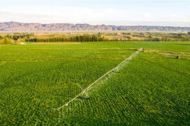包头市农牧业科技贡献率达58% 促进农牧业高质量发展