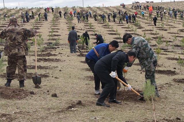 通辽科左中旗今年将实施双百万亩生态治理工程