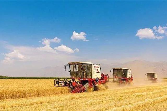 巴彦淖尔市河套农产品出口蝉联内蒙古十连冠