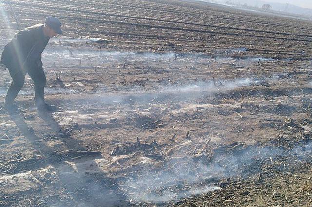 呼和浩特市赛罕区近期发生多起焚烧秸秆火灾
