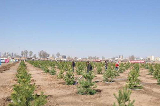 鄂尔多斯将植树800万株 多措并举确保树木健康生长