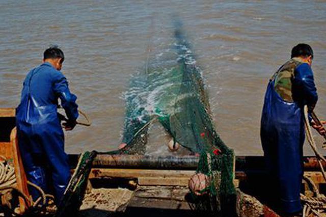 禁渔期乌海严打私捕乱捞 为迁徙候鸟创造安全歇息环境