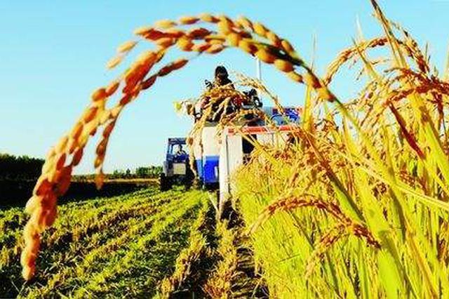 呼和浩特财政部门集中资金做好支农工作