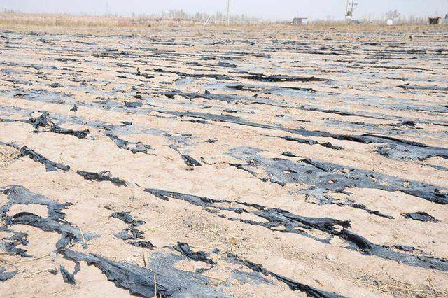 通辽开鲁县推进废旧地膜回收利用 有效控制污染问题
