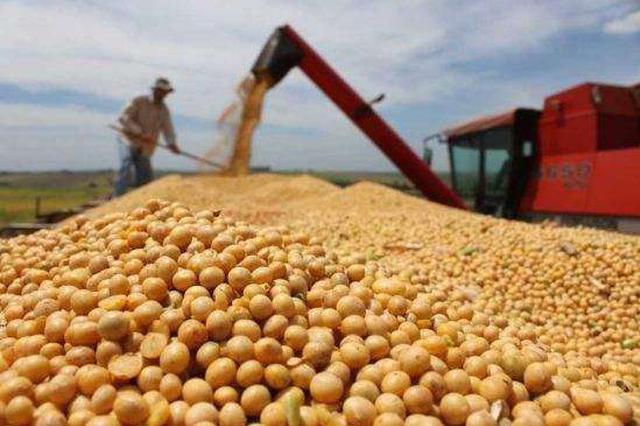 河套一季度农产品出口总值占全区六成以上
