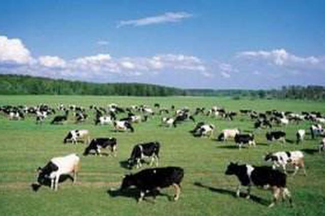 内蒙古农牧通——农牧业生产技术咨询服务系统启动