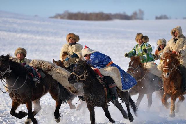 骏马骆驼扮靓冬日草原