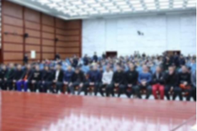 2019年内蒙古各级法院审结涉黑涉恶犯罪案件556件