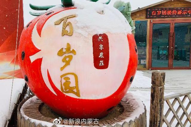 """新春走基层 走进""""百岁园"""" 品味果蔬香"""