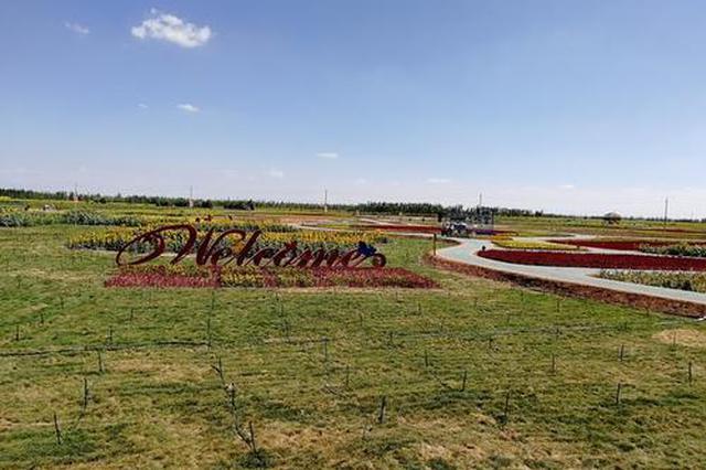 巴彦淖尔市五原县乡风文明让农民获得更多幸福感