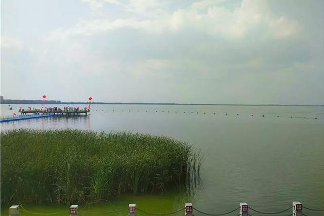 爱上内蒙古 | 南海湿地—包头市的天然氧吧