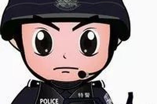 集宁区反恐怖特巡警大队做到白天见警察,夜间见警灯